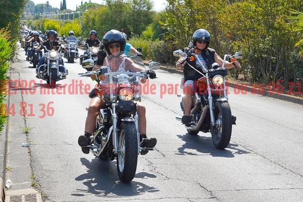 4153_photo_officielle_brescoudos