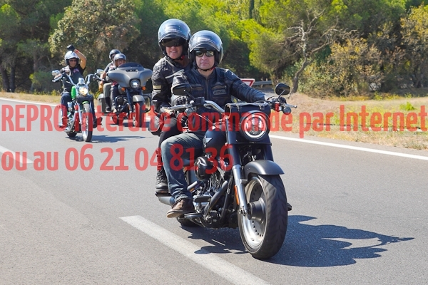 8368_photo_officielle_brescoudos