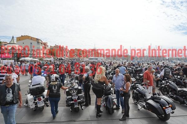7040_photo_officielle_brescoudos