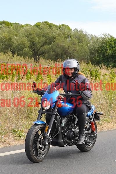 7175_photo_officielle_brescoudos