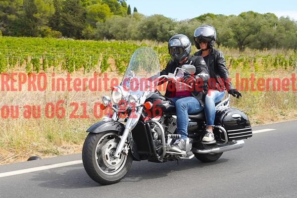 7350_photo_officielle_brescoudos