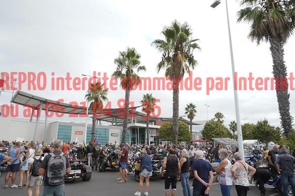 6002_photo_officielle_brescoudos