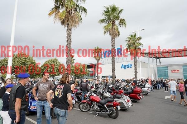 6003_photo_officielle_brescoudos