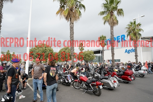 6005_photo_officielle_brescoudos