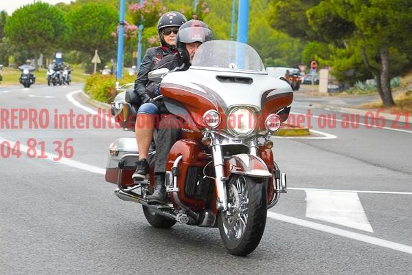 5293_photo_officielle_brescoudos