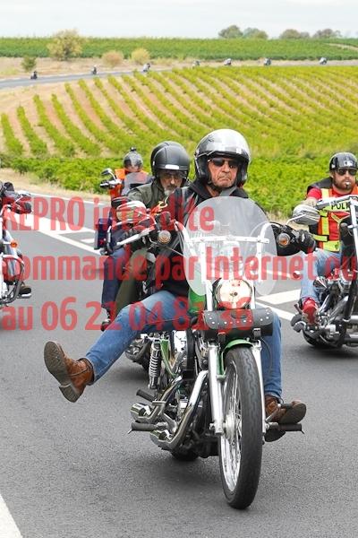 6175_photo_officielle_brescoudos
